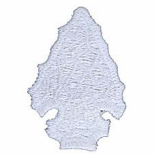 arrowhead_award